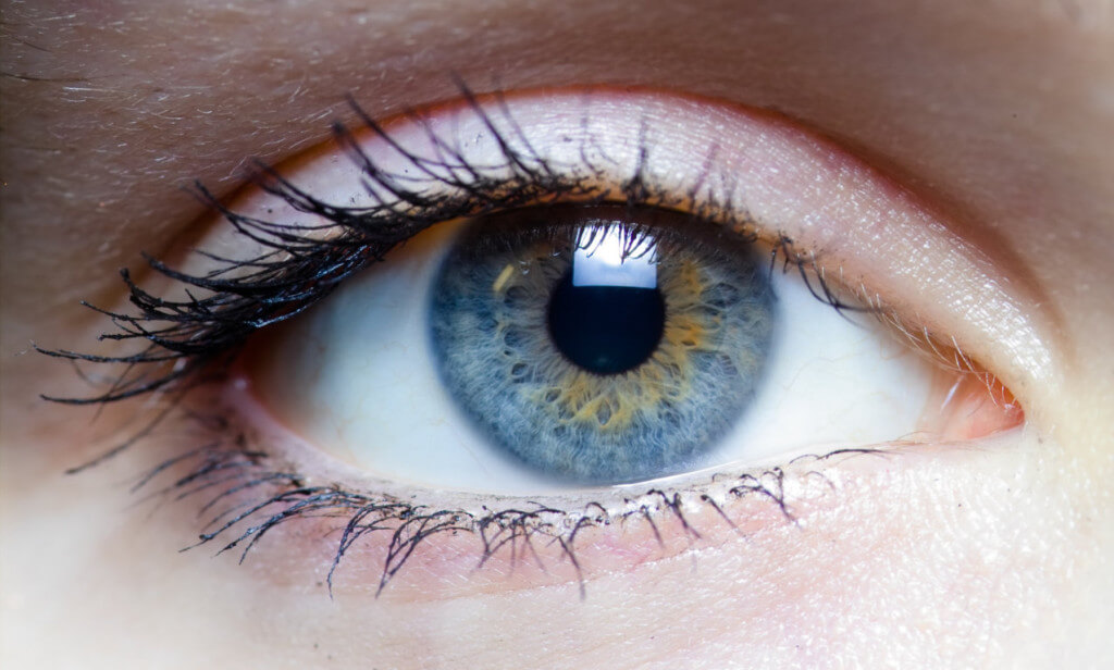 Health Tips For Protecting Your Eyes While Working On A Computer