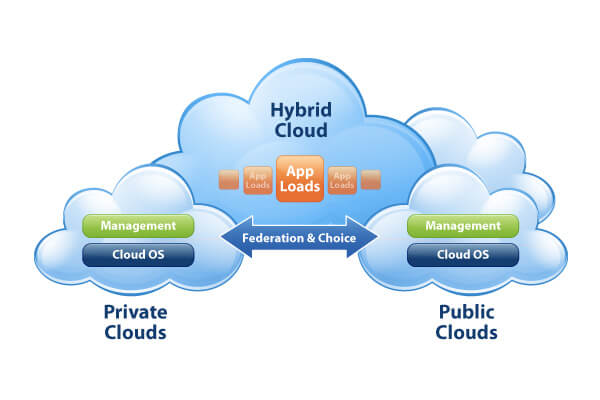 ( Check ) What is the model of Cloud Computing suitable for your company?