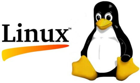 You could lose your warranty by installing Linux on your computer