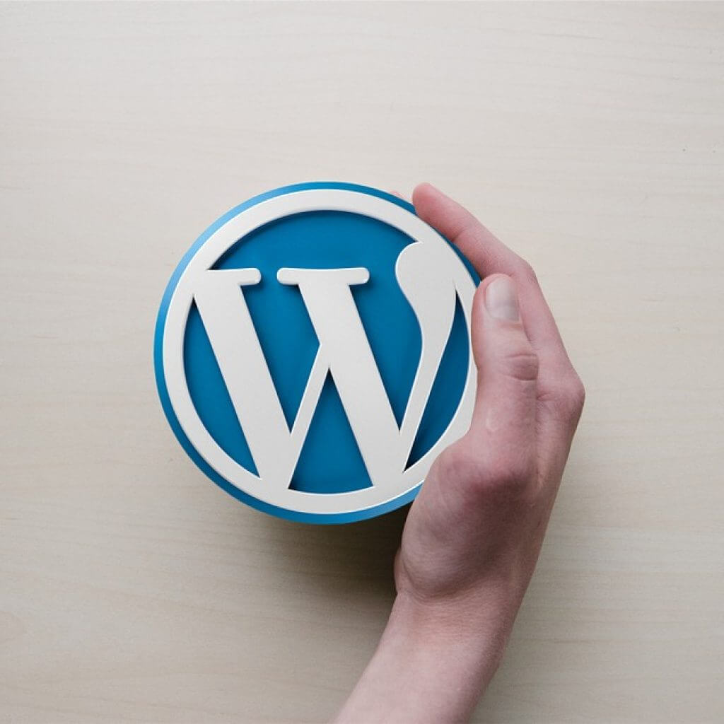 How To Install WordPress On A Domain – The Beginner Guide
