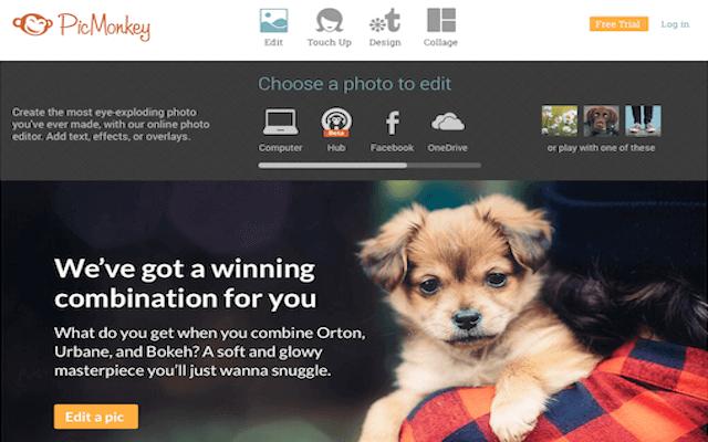 Photo editors - PicMonkey for image editing