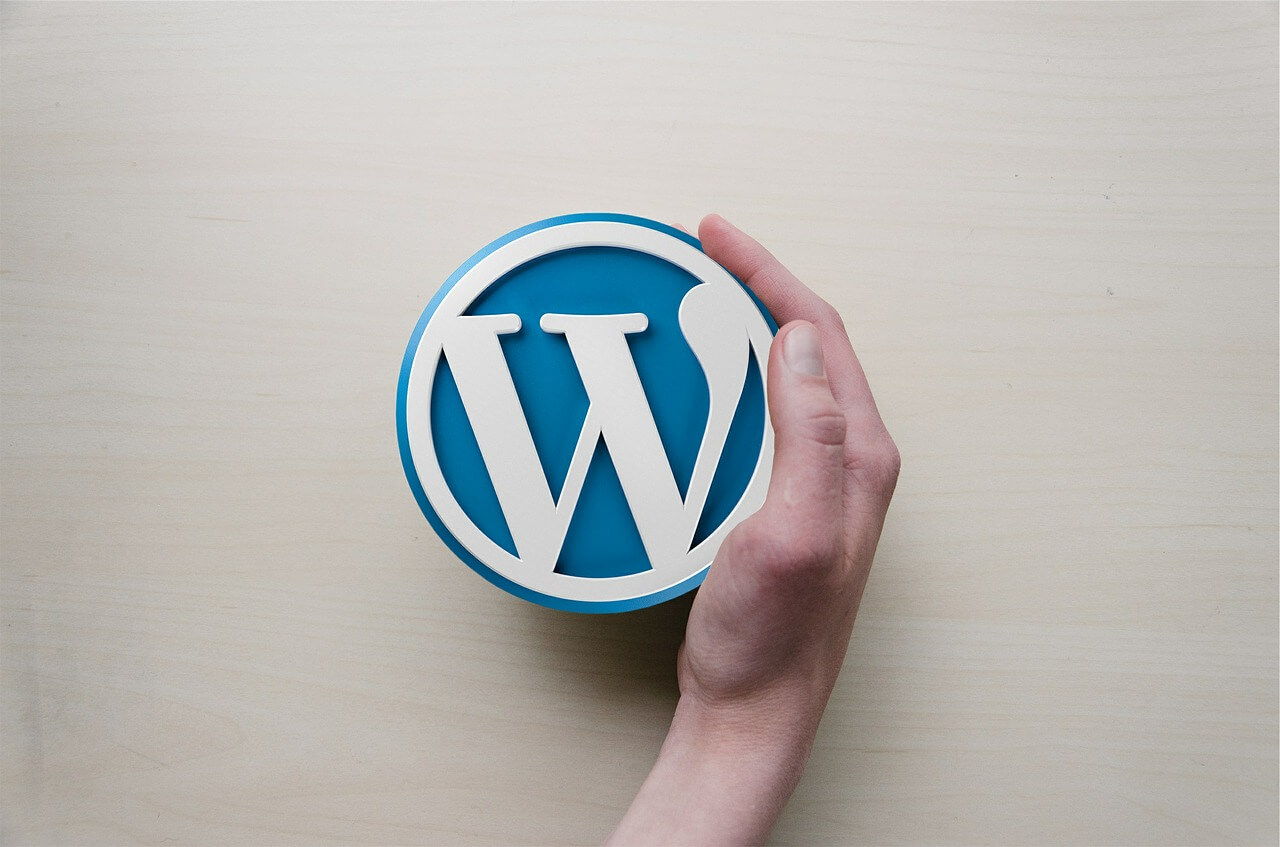 professional website with wordpress
